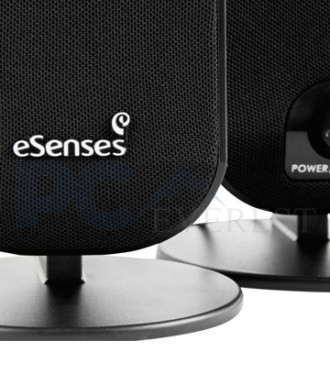 eSenses Speakers SS 2000